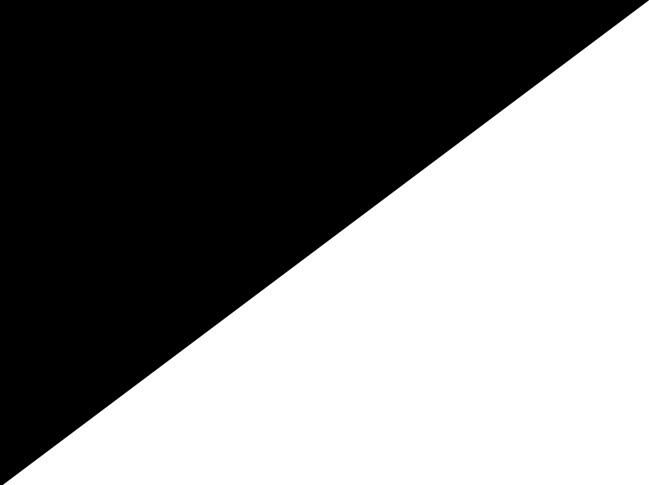 Negru cu Alb